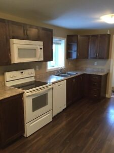 2 bdrm Basement  Apt, rear ground level entrance 1st month free
