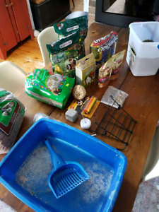 Bunny supplies and food items