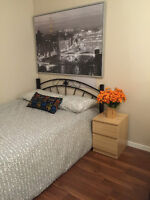 *****looking for a female roommate (Dec1) (Main - King Edward)