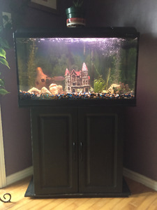33 gal fish aquarium and stand with complete freshwater set up