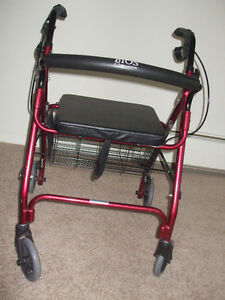 Bios Diagnostics Walker