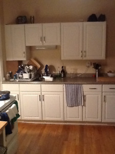 All Inclusive 1Bed in Little Italy.  In-Suite Laundry March 15