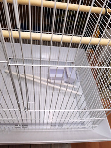 Cockatiel or small bird cage for sale
