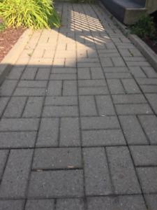 Briques de pavé uni