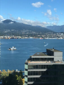 Great furnished 1 bedroom and den with full view in coal harbour