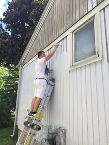 Need a professional painters!!
