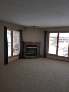 Penthouse,   beautiful  adult (35+) condo close to downtown
