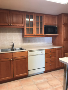 KITCHEN CABINETS + APPLIANCES  - PICK UP ONLY