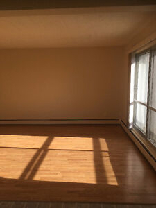 Renovated Southgate 2 Bedroom Apartment Available June 1st