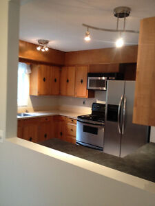 Beautiful Newly Renovated Large 3 Bdrm Suite avail June 1st
