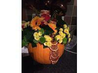Halloween Pumpkin flower displays