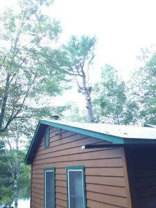 Tip Top Tree Removal and Services Cambridge Kitchener Area image 3