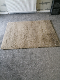 Champagne (Light Brown) Shaggy rug