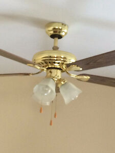 Ceiling Fan with Lights and Remote