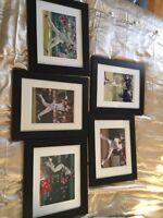 Baseball Autographs