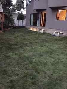 Darren Chambers Bobcat & Landscaping Services Strathcona County Edmonton Area image 3