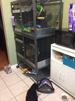 Double Critter Nation Pet Cage