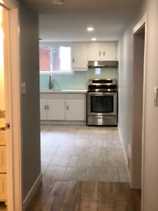 Beautifully renovated apartment for rent
