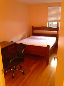 Roommate Wanted for Apartment in the McGill Ghetto