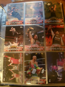 Cartes lutte: Road to Wrestle Mania 2018