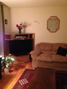 Furnished house for rent - Spruce Park area