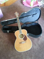 Greg Bennett Guitar & Case