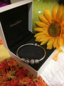 Pandora Bracelet including two charms and two spacers