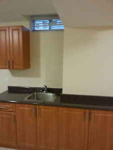 Newly Finished 1 bedroom apartment in Ajax