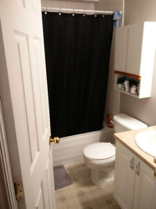 Roommate wanted: Room with private bathroom in house
