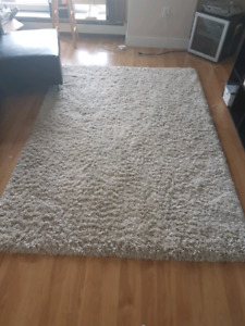 Super soft white shag carpet