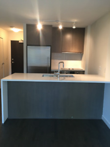 1 bedroom apartment + 1 large den in downtown Vancouver