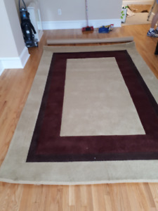 New Area Rug - 6 x 9