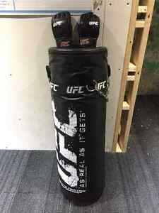 UFC Punching Bag and Gloves