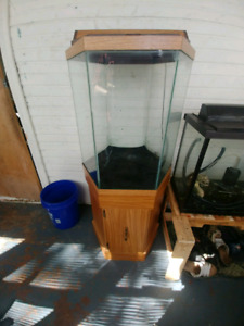 40g hex tank with stand lid and light 125 obo