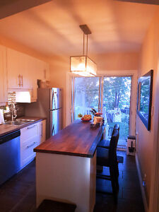 Charming 1BR with Modern Kitchen, included: elec,heat,hot water