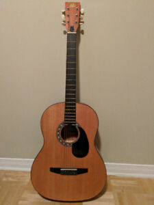 Rogue Fine Instruments Starter Acoustic Guitar for beginners!