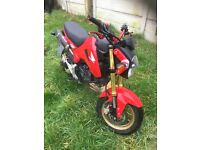 Honda msx 125 grom swap for wr dtr dr or what you got