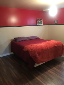 Room for rent in Kingston behind Rona