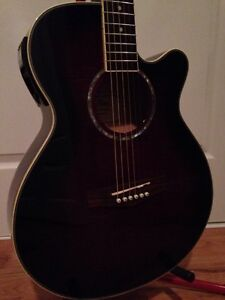 Beautiful acoustic-electric, FINA, near mint, great sound