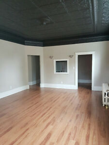 Beautiful 3 bedroom apartment not far from downtown or the water