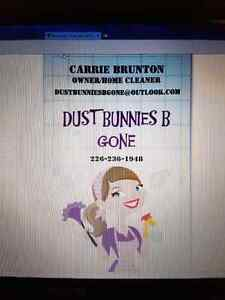 Dust Bunnies B Gone Home Cleaning  London Ontario image 1