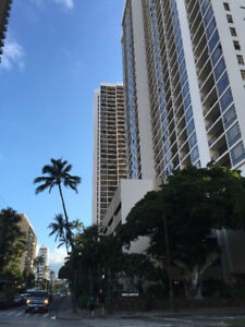 Waikiki Beach 1 bdm Condo Available Jan.6-20, 2018