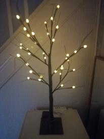 Prune tree with lights