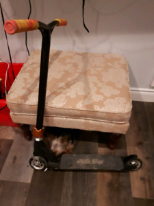 Hella Grip Scooter...excellent quality...dog not included :) !!