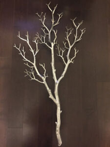Manzanita branches for sale