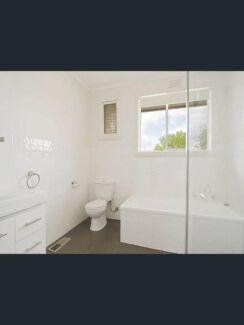 Urgent, House for rent Mt waverley
