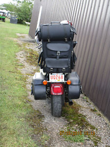Harley Sportster 1200 XL Low Strathcona County Edmonton Area image 2