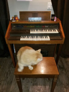 Electric Organ For Sale! Make an offer!
