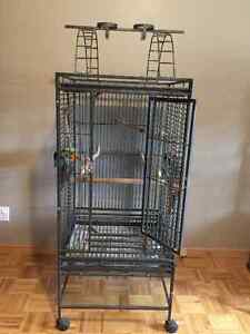 2 Large Parrot Cages