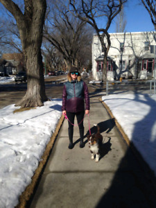 Affordable dog walking - City park & Richmond heights area